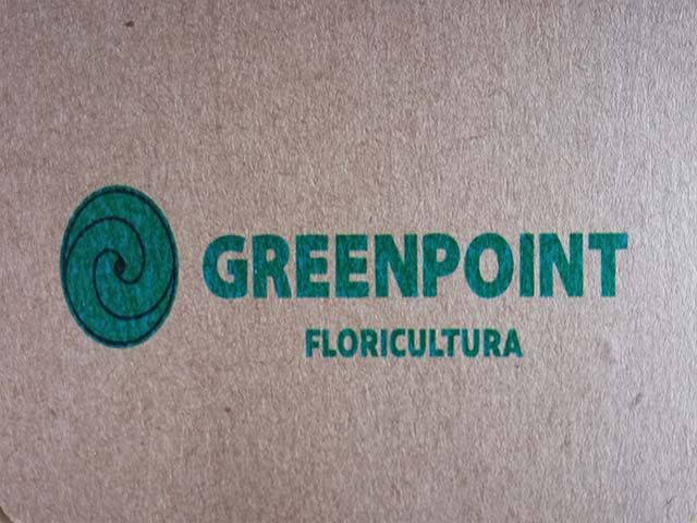 GREENPOINT FLORICULTURA